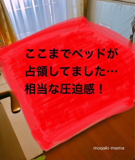 f:id:sobakasukarashimie:20180221133626p:image